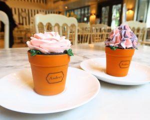 植木鉢の花ケーキ『Aundrey:オードリー』@トンローSoi11