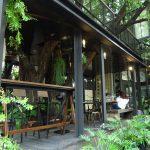 緑あふれる小さなイタリアン店『AZZURRO』@プラカノンsoi46