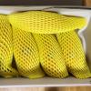 旬のタイ産マンゴーを日本へ配送!
