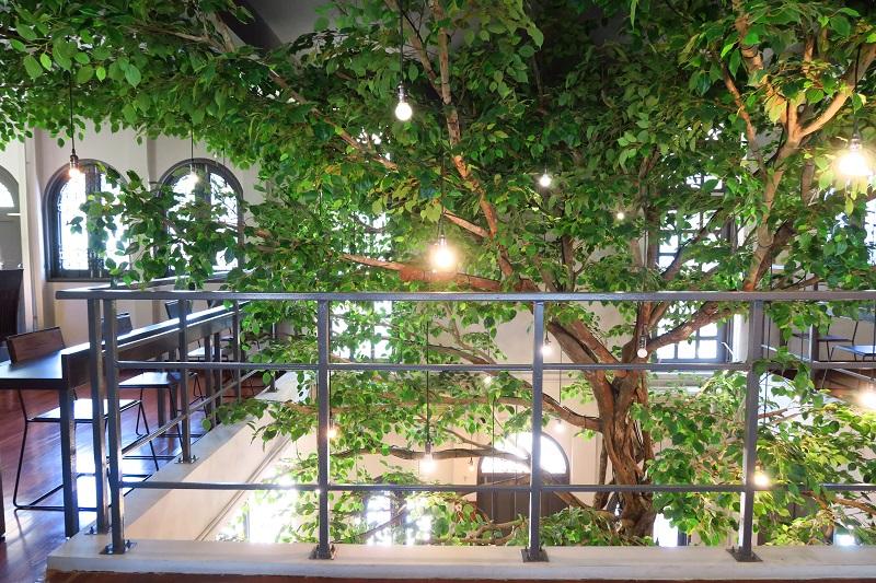 室内に大きな木が生える一軒家カフェ「THE TREE」でランチ@トンローsoi49