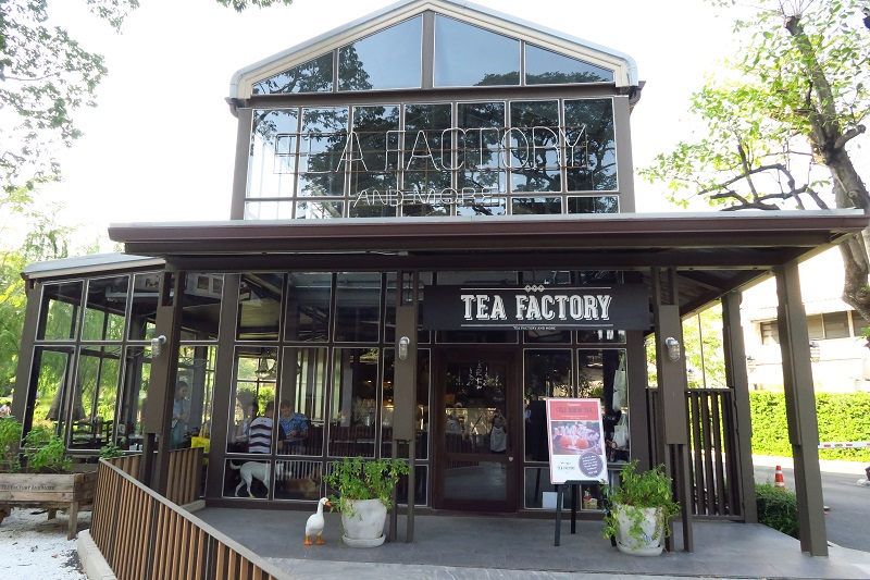 ドッグラン付き★犬も猫も店内OK「Tea Factory and More」でカフェ@soi39