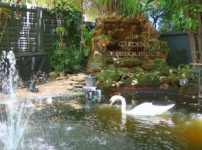 白鳥がいるレストラン『The Gardens of Dinsor Palace』@Sukhumvit 59-61